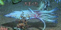 20080621ika.jpg